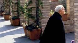 Św. Jan Paweł II: Krzyż - miłość nieskończona - miniaturka
