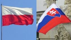 Polsko-słowackie zbliżenie. Czy jest potrzebne? - miniaturka