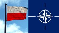 Kto się liczy w NATO? Londyn, Paryż - i Warszawa - miniaturka