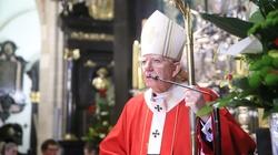 Abp Marek Jędraszewski: We współczesnym świecie potrzeba odważnych świadków Chrystusa - miniaturka