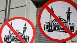 Czesi odważnie przeciw islamskiemu pochodowi - miniaturka