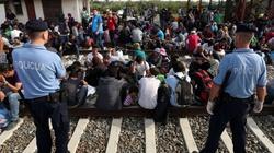Imigrancki szturm po zasiłek do Europy trwa - miniaturka