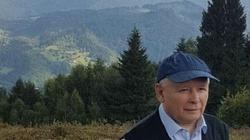 Totalni wykryli aferę stulecia?'Śledztwo fotoszopowe w sprawie swetra Kaczyńskiego' - miniaturka