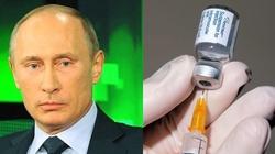 Antyszczepionkowcy - szaleńcy czy trolle Kremla? - miniaturka