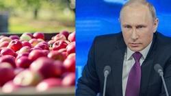 Cezary Kaźmierczak: Rosyjskie embargo NIE DZIAŁA!  - miniaturka