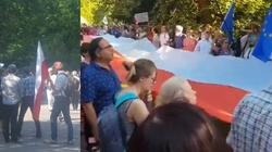 Protest przed Senatem. Jest i Kijowski! - miniaturka