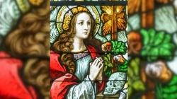 Św. Rozalio, patronko chroniąca przed zarazą, módl się za nami  - miniaturka