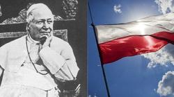 Bł. Pius IX, defensor Poloniae - obrońca wiary i Polski - miniaturka