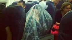 Ortodoksyjny Żyd w samolocie zapakował się ... w worek ! - miniaturka