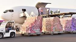 MSZ dziękuje Chinom za przesłanie Polsce pomocy - miniaturka
