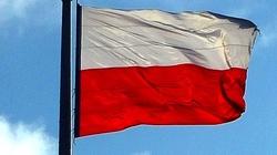 Tomasz Teluk: Gospodarka Polski najlepsza od lat! Brawa!!! - miniaturka