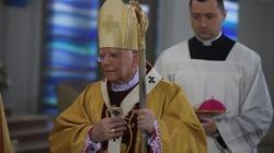 Abp Marek Jędraszewski: Miłosierna miłość Boga zwycięża świat - miniaturka