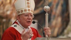 Dzień Islamu w Kościele katolickim bez krzyża. Jest oświadczenie Archidiecezji Krakowskiej - miniaturka