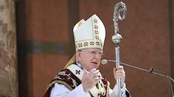 Po Czechach przyszedł czas na Słowację. Chodzi o wsparcie abp. Jędraszewskiego - miniaturka