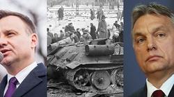 Prezydent Andrzej Duda w Budapeszcie na obchodach 60. rocznicy powstania węgierskiego - to dowód przyjaźni i zaszczyt - miniaturka