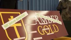 Drugi dzień przesłuchań. Czego dziś dowiemy się o Amber Gold? - miniaturka