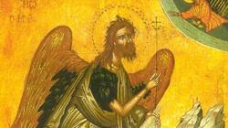 Niech nasze sumienie zostanie obudzone za wstawiennictwem Anioła Pustyni! - miniaturka