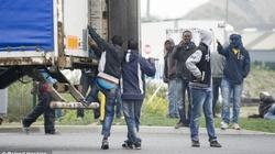Niebo a ziemię zostawią... Tak imigranci niszczą Francję!!! - miniaturka