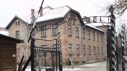 A pod choinką leżały trupy. Wigilia w Auschwitz - miniaturka