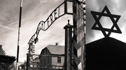 Żydowski tygodnik: Ochrona dobrego imienia Polski to negacja Holokaustu! - miniaturka
