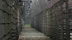 Wawrzyk: Pojęcie 'polskie obozy' powstało jeszcze w RFN - miniaturka