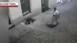 Zamach w Austrii. Zatrzymano islamistę  - miniaturka