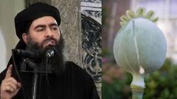 Nowy biznes kalifatu: heroina - miniaturka