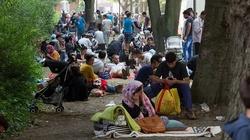 Berlińskie gangi Arabów rekrutują uchodźców - miniaturka