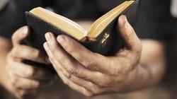 Szwedzki Kościół zbombarduje ISIS … Bibliami - miniaturka