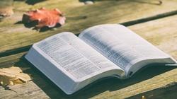 Politycznie poprawna Biblia w Danii - miniaturka