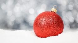 Doczekamy się białych świąt Bożego Narodzenia? My już wiemy - miniaturka