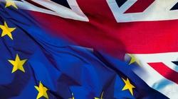 Unia Europejska zgodziła się na Brexit do 31 stycznia - miniaturka