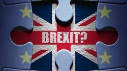 Wiec w Londynie: Zostańmy, Brexit to szaleństwo! - miniaturka