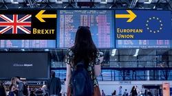 Ponad 200 tys. Polaków opuściło już Wielką Brytanię z powodu Brexitu - miniaturka