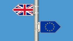 Zbigniew Kuźmiuk: Brexit to tak, jakby UE opuściło 19 państw - miniaturka
