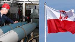 Tomasz Teluk: Broń jądrowa - także dla Polski! - miniaturka