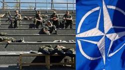 Niemcy nie chcą umierać za Warszawę - miniaturka