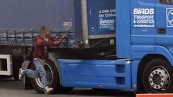 Imigranci atakują...polskich kierowców ciężarówek! - miniaturka