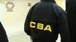 CBA zatrzymało osiem osób- w tym syna byłej minister - miniaturka