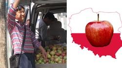Polskie jabłka mogą zawojować Chiny! - miniaturka
