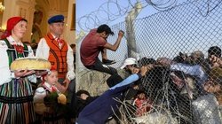 Imigranci są wybredni i nie chcą do Polski ! - miniaturka
