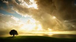 Ks. Sochoń: Bóg rodzi się w bezgrzesznej duszy, ciszy i skupieniu - miniaturka