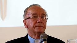 Niejawne sympozjum progresistów przed Synodem Amazońskim - miniaturka