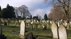 Niebywałe! Pierwszy na świecie antyreligijny cmentarz - miniaturka