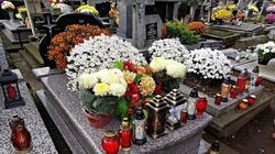 Wszystkich Świętych. Czy cmentarze będą zamknięte z powodu koronawirusa? - miniaturka