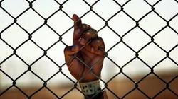 Coraz więcej ofiar handlu ludźmi - prostytucja, nielegalne adopcje, organy - miniaturka
