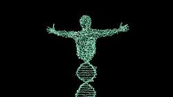 In vitro pozwala na genetyczne modyfikacje ludzi zgodnie z aktualnym zapotrzebowanie politycznym i komercyjnym - miniaturka