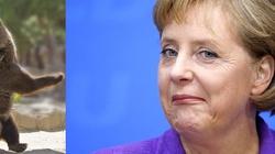 Bloomberg: Putin musi tańczyć, jak zagra Europa - miniaturka