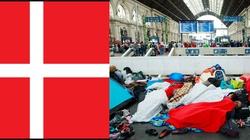 Duńczycy mają pomysł na uchodźców! Zagrają z nimi w piłkę nożną - miniaturka