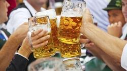 Rakotwórcza substancja w niemieckich piwach dostępnych w Polsce - miniaturka